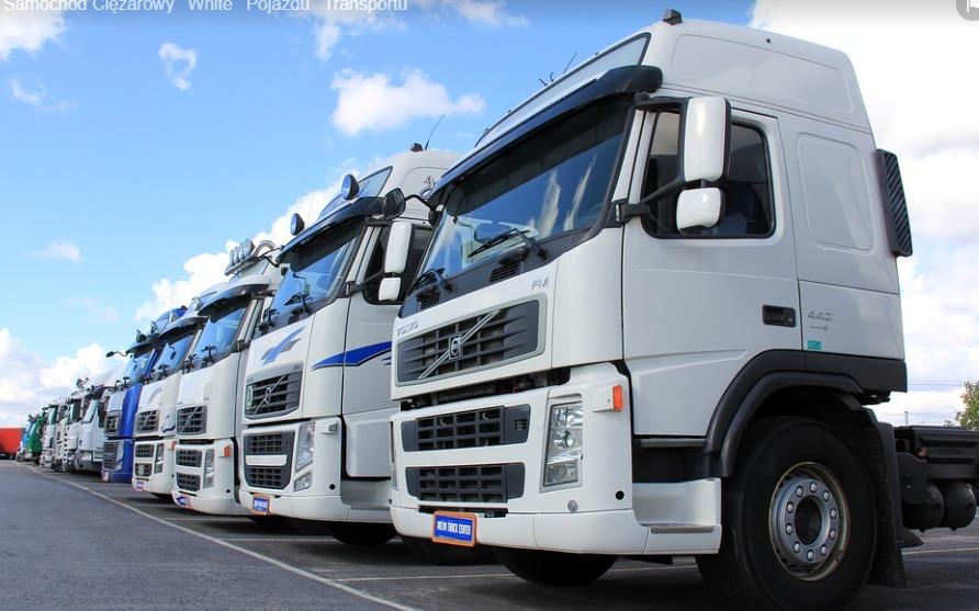 pax logistics opinie